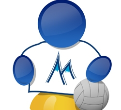 L'équipe de France de volley-ball qualifiée pour les JO