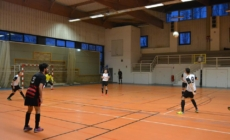 Le Futsal Lac d'Annecy retrouve la victoire face à JOGA