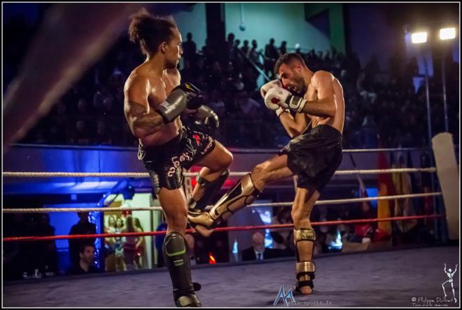#Vidéos The Shock Fight : des combats, pas de blabla