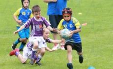 L'école de rugby de Saint-Martin d'Hères en images