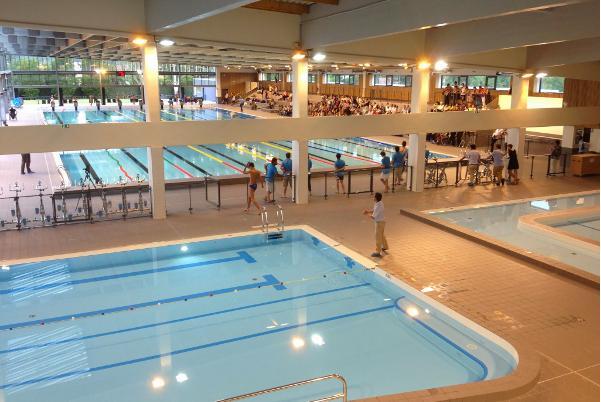 Les nageurs du NC Alp 38 en forme aux championnats régionaux