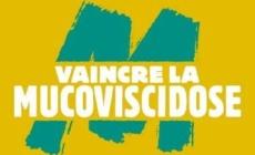 Virades de l'Espoir : une journée festive organisée à Lans-en-Vercors
