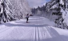 [Agenda] Stage handisport de ski nordique organisé par Vercors Handisport