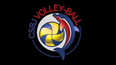 Un nouveau logo pour le CSBJ Volley