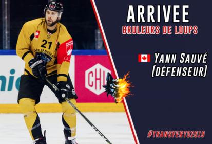 Nous vous l'avions annoncé il y a quelques jours : Yann Sauvé est bien un joueur des Brûleurs de Loups