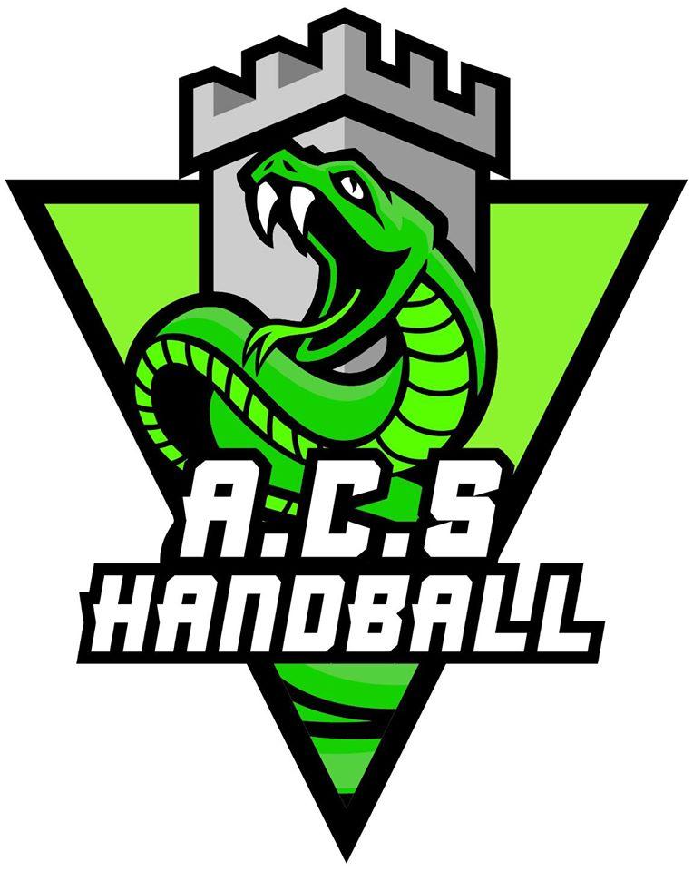 Zoom sur l'activité Hand'adapté mise en place par l'AC Seyssinet Handball