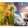 Le ministère des Sports publie 4 guides pratiques post-confinement liés a la reprise des activités physiques et sportives
